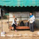 Din Thailanda in Laos – excursie pe Mekong