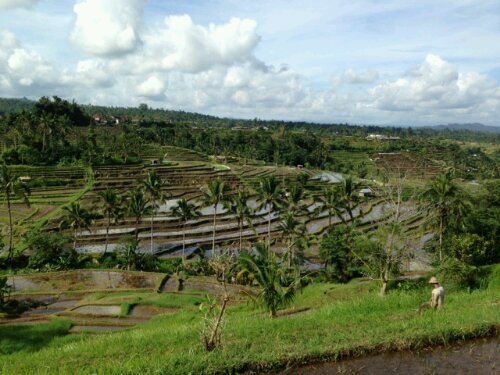 Road trip – Bali part 2