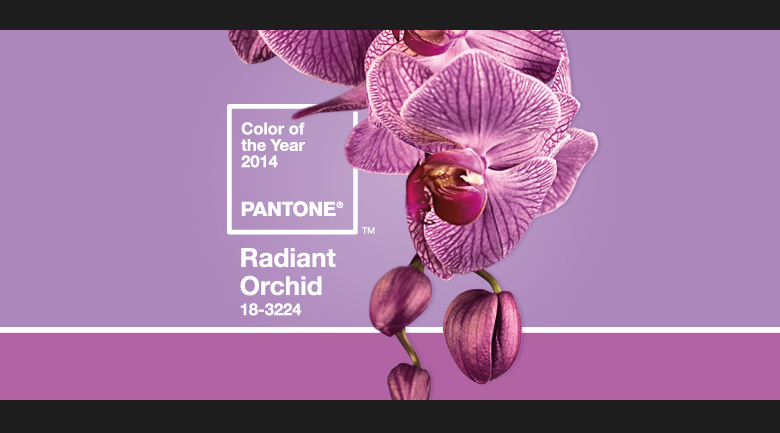radiant-orchid