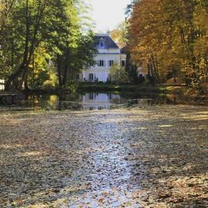 Castelul Arcus Sf Gheorghe Beautiful Romania romania autumncolors
