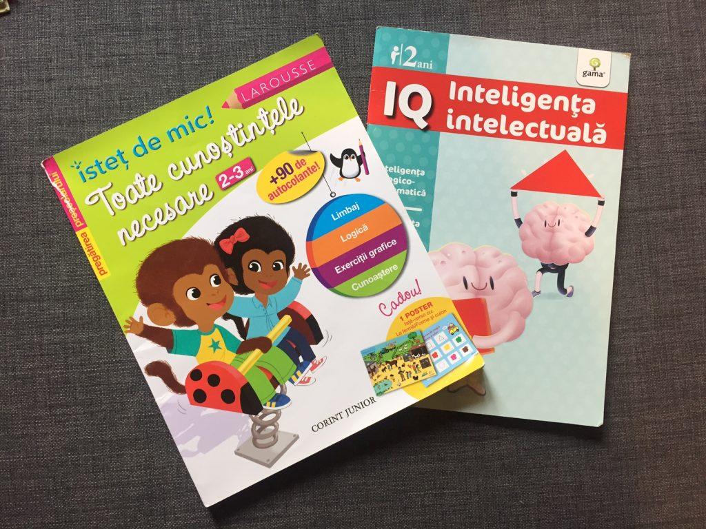 Activități pentru copii de 2-3 ani: Cărți cu autocolante și puzzle-uri